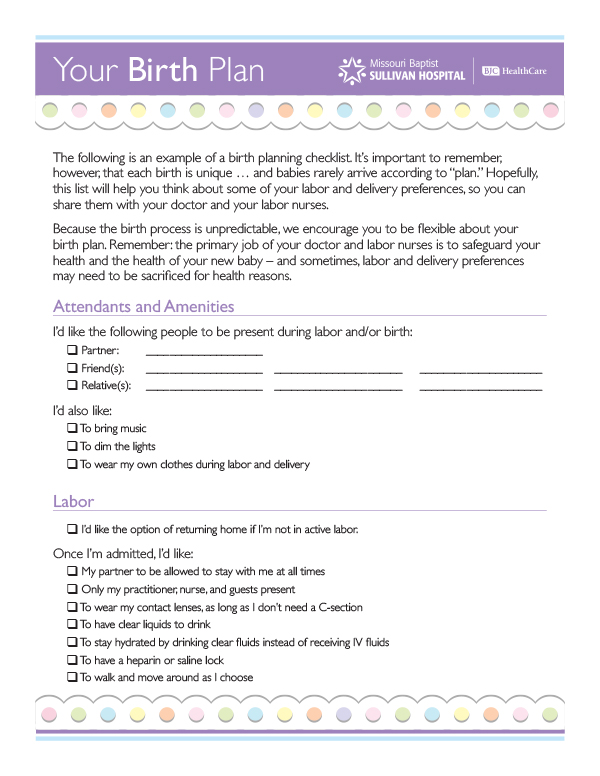 Birth Plans. Birth Plan Template 02 47+ Printable Birth Plan